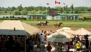 Fort ERie Racetrack Horse Trackside Tiki Bar Music Concert Live Entertainment Chinese Pop Rock World Tour Band IGC Entertainment Canada Linda Randall