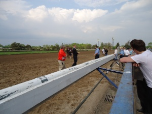 security horses fort erie racetrack 542 pm edt 27 may 2014 linda randall